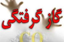 125 نفر امسال در زنجان دچارگاز گرفتگی شدند