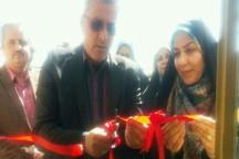 مرکز پرورش ماهیان زینتی در آبیک توسط یک بانوی کارآفرین افتتاح شد
