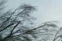 وزش بادهای لحظه ای پدیده غالب جوی قزوین است