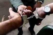 3 فرد متخلف به خاطر جمع آوری گیاه باریجه در گرمه دستگیر شد