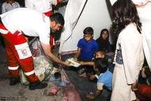 هلال احمر همدان به 3991 سیل زده امداد رسانی کرد