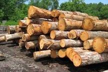 کشف یک تن چوب جنگلی قاچاق در قائم شهر