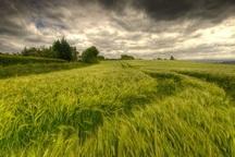 کشاورزان کهگیلویه و بویراحمد مواظب هوای روزهای آینده باشند