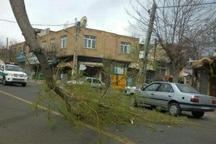 مدیریت بحران استانداری اردبیل در مورد خسارت احتمالی تندباد هشدار داد
