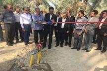 یک هزار هکتار از زمینهای کشاورزی شهرستان تنگستان بوشهر زیرپوشش طرح آبیاری تحت فشار قرار گرفت