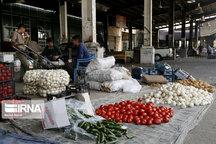 ۲۵ تا ۳۰درصد تولیدات بخش کشاورزی لرستان از بین می رود