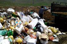 ۲ تن مواد غذایی فاسد در عنبرآباد معدوم شد