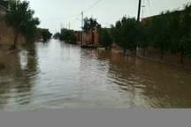 بارندگی و تندباد شمال خوزستان را فرا گرفت