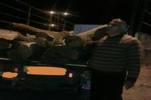 بیش از سه تن چوب قاچاق در سروآباد توقیف شد