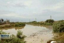رودخانه های پرآب گلستان خطر سیل ندارد