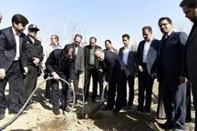 استاندار البرز نهال میوه غرس کرد اجرای طرح بیابان زدایی در ۴۰ هزار هکتار کانون بحرانی البرز