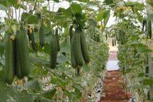 2 طرح کشاورزی در شهرستان مُهر بهره برداری شد