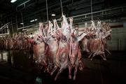 گوشت شقه گوسفندی حداکثر باید 50هزارتومان باشد