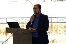 """مراسم روز مزرعه با عنوان """"بررسی اثر کودهای زیستی روی عملکرد گندم"""" برگزار شد"""