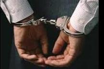 دستگیری حفار غیرمجاز در مناطق تاریخی سیاهکل