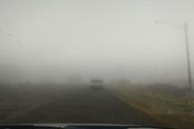 جاده های زنجان مه آلود است