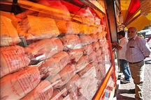 عرضه مرغ منجمد با قیمت دولتی در قزوین آغاز شد