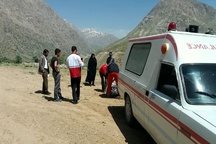 انتقال 2 بسته از پیکرهای جانباختگان سانحه هوایی به پزشکی قانونی یاسوج  تلاشها برای پیدا کردن پیکرها در ارتفاعات دنا ادامه دارد
