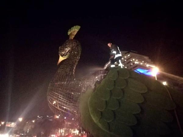 دستگیری عامل آتشسوزی مجسمه طاووس در شیراز