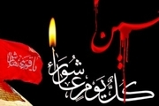 کارشناسان مذهبی:مجالس عزاداری محرم بهترین مکان برای معرفت افزایی است
