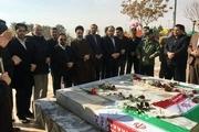 کاشت ۱۱۲ نهال به یاد شهدای شهرستان خواف