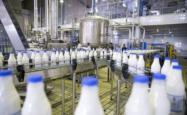 سهامداران کارخانه شیر ایلام بدهی بانکی خود را تعیین تکلیف کنند