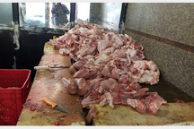 کشف 351 کیلوگرم گوشت مرغ فاسد از تالار پذیرایی در فسا
