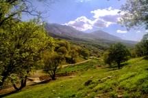 اجرای طرح حفاظت مشارکتی منابع طبیعی در 362 هزار هکتار از اراضی ملی کردستان