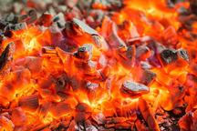متخلفان تولید ذغال غیرمجاز درشهرک کارگاهی زاهدان دستگیر شدند