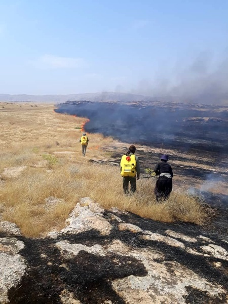 مهار سه فقره آتش سوزی در منطقه حفاظت شده کرائی شوشتر  علت این حوادث، آتش زدن کاه و کلش بود