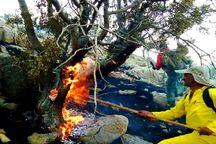 آتش در سه نقطه کوهستانی ایذه زباله کشید