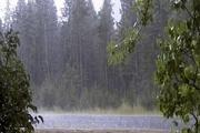 بارندگی در خراسان رضوی 70 درصد افزایش یافت