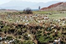 حکم شکارچی متخلف برای جمعآوری زباله اجرا شد
