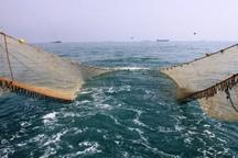 صیادان متخلف در بوشهر به پاکسازی ساحل محکوم شدند