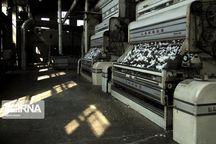 ظرفیت فرآوری محصولات کشاورزی گلستان به ۵ میلیون تن میرسد