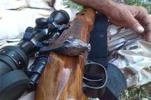 شکارچیان غیرمجاز حیات وحش آمل دستگیر شدند