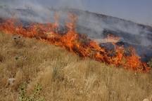 یک فقره آتش سوزی در مراتع قزوین به وقوع پیوست