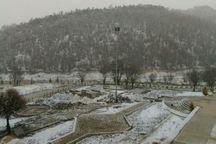 بارش نخستین برف زمستانی در یاسوج