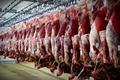 مظنونان فروش گوسفند مرده در شیراز 2 نفر هستند