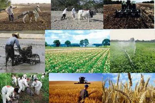 3647 میلیارد ریال تسهیلات به کشاورزان قزوینی پرداخت شد