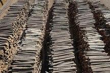 70 کارگاه غیرمجاز تولید زغال در فارس پلمب شد