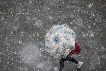 بارش برف برخی مدرسه های استان سمنان را تعطیل کرد