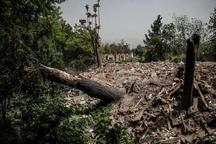 جزئیات تخریب باغ های پایتخت به گواه آمار