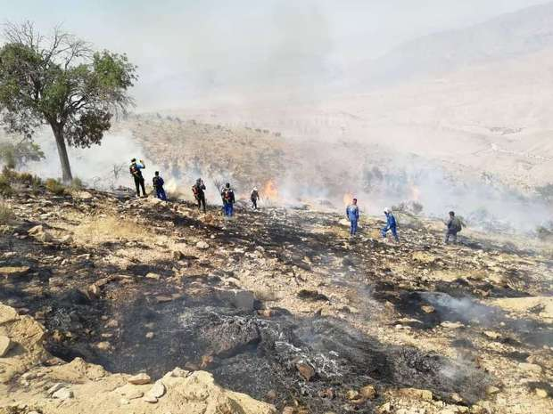 منابع طبیعی تنها مرجع اعلام آمار آتشسوزی عرصههای مرتعی و جنگلی است
