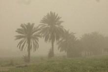 120 روستای ریگان در محاصره گرد و غبار قرار دارد