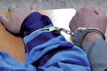 دستگیری صیادان غیرمجاز تیهو در تربت حیدریه
