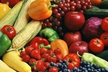 صادرات 67 میلیون دلاری کالاهای کشاورزی از گمرکات آذربایجانشرقی در سه ماهه اول سال جاری