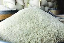 خرید برنج مازندران تضمینی شد