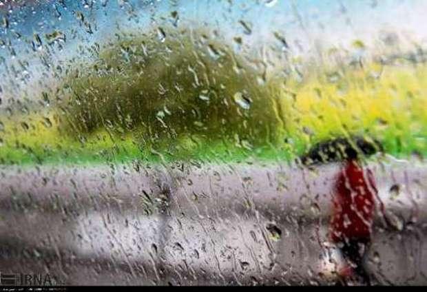 بارندگی در استان بوشهر ادامه دارد