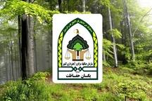 حمله به مامورین حفاظت واحد منابع طبیعی در گیلان